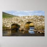 Old Irish Bridge Print