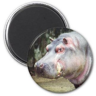 Old Jewel Fridge Magnet