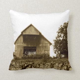 Old Kentucky Barn Pillow