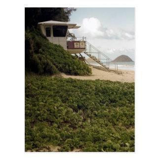 Old Lifeguard Shack Postcard