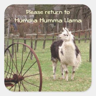 Old Llama Bookplate ~ sticker