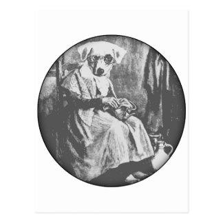 Old Maid Dog Postcard