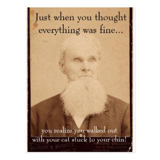 Old Man Bad Hair Day Postcard