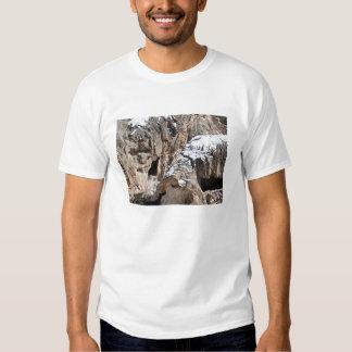 Old Man of the Jemez Soda Dam Shirt