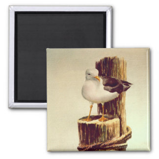 OLD MAN SEAGULL by SHARON SHARPE 2 Inch Square Magnet