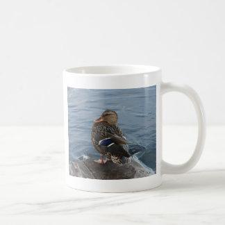 Old McDonald had a duck........... Coffee Mug