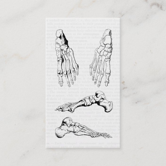 Old Medical Art Human Anatomy Bones Of The Foot Business Card Zazzle Com