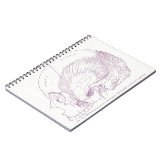 Old Medical Drawing Human Temporal Muscle Spiral Notebook