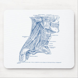 Old Medical Drawing Muscles of the Neck Blue Mouse Pad
