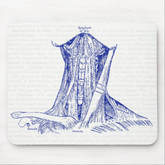 Old Medical Drawing Neck Muscle Mouse Pad