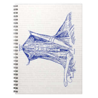Old Medical Drawing Neck Muscle Notebook