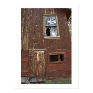 old neosho mine building postcard