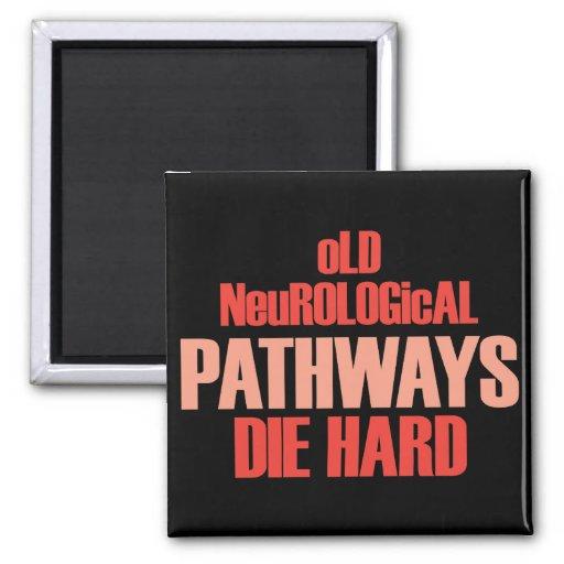 Old Neurological Pathways Die Hard Magnet