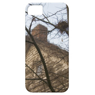 Old & New, Birds Nest & Farmhouse iPhone SE/5/5s Case