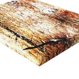 Old Oak Tree Bark Gallery Wrap Canvas