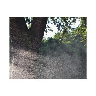 old oak trunk with sprinkler canvas print