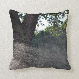 old oak trunk with sprinkler pillow