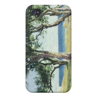 Old Olive Trees, Bordighera Cover For iPhone 4