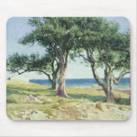 Old Olive Trees, Bordighera Mouse Pads