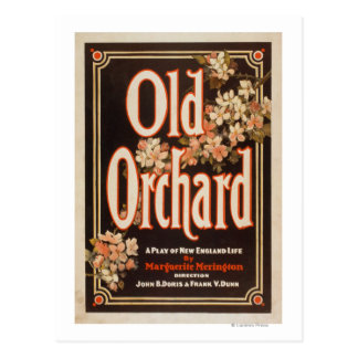 Old Orchard a Play of New England Life Poster Postcard