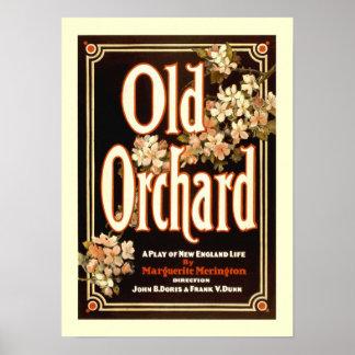 Old Orchard Vintage Poster