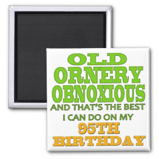 Old Ornery Obnoxious 95th Birthday Gifts Magnet