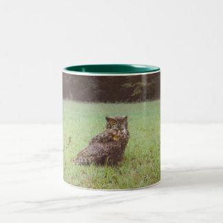 old owl Two-Tone coffee mug