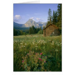 Old Park Service cabin in the Cut Bank Valley Greeting Cards