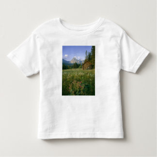 Old Park Service cabin in the Cut Bank Valley Toddler T-shirt