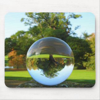Old Park Tree, crystal ball Mouse Pad