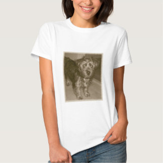 Old Photo Silky yorkie terrier T Shirt