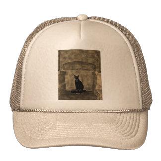 Old Photo Tomb Cat Trucker Hat