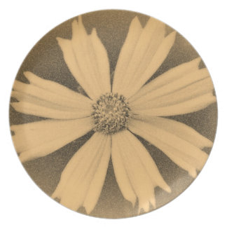 Old photo Yellow Cosmos Flower Close-up 2 Dinner Plate