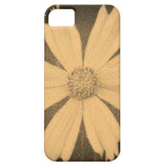 Old photo Yellow Cosmos Flower Close-up iPhone SE/5/5s Case