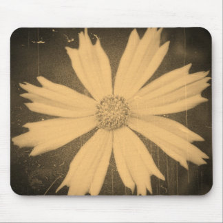 Old photo Yellow Cosmos Flower Close-up Mousepads