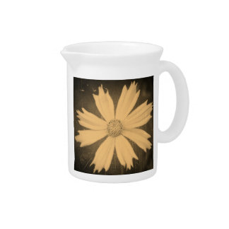 Old photo Yellow Cosmos Flower Close-up Beverage Pitchers