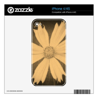 Old photo Yellow Cosmos Flower Close-up Skin For iPhone 4