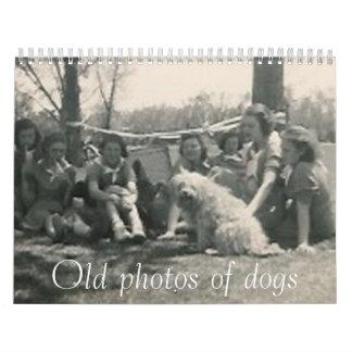 Old photos of dogs calendar