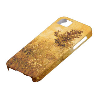 Old Picture of Landscape iPhone 5 Covers