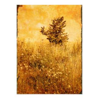 Old Picture of Landscape 5.5x7.5 Paper Invitation Card