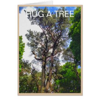 Old Pine Hug A Tree Greeting Card