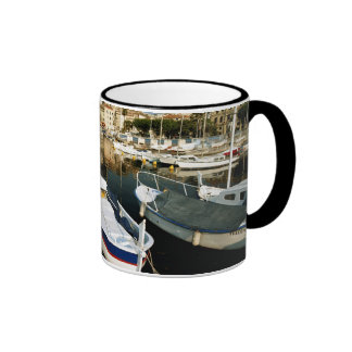 Old port ringer mug