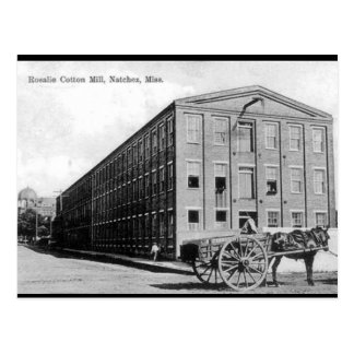 Old Postcard - Natchez, Mississippi