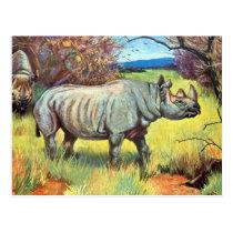 Old Postcard - Rhinoceros