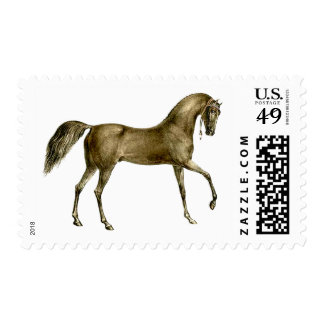 Old Print Horse Image Postage Stamp