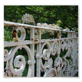 Old Rail and Hydrangeas Poster