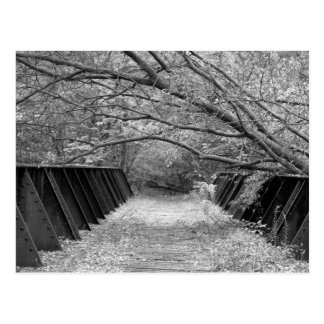 Old Railroad Bridge Postcard