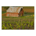 Old red barn at the edge of Zinfandel vineyard Card