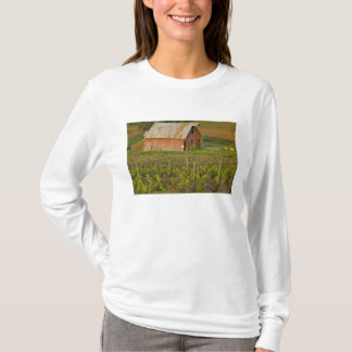 Old red barn at the edge of Zinfandel vineyard T-Shirt