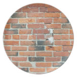 Old Red Brick Dinner Plates